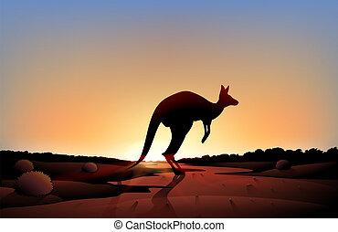 A sunset with a kangaroo