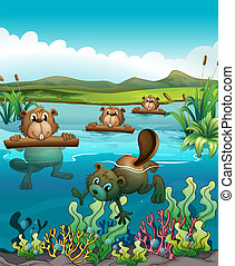 Four beavers playing in the river - Illustration of the four...