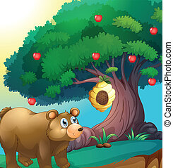 A bear looking at the beehive hanging in an apple tree
