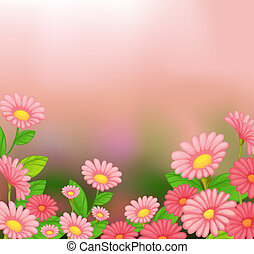 A view of the beautiful pink flowers - Illustration of the...