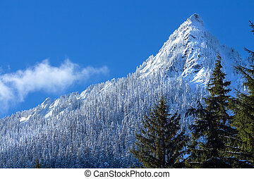 McClellan Butte Snowy Trees Snow Mountain Cascade Mountains Snoqualme Pass Washington