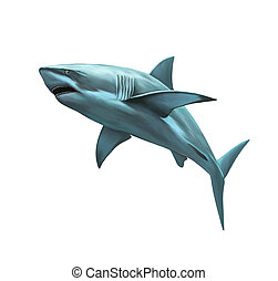 large grey reef shark showing the mouth and teeth, Isolated...