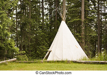 Single Teepee In Field - A single, solitary teepee in a...