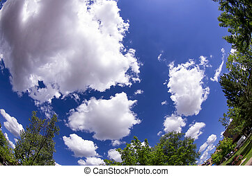 Santa Fe Summer Sky - Expansive summer sky in northern New...
