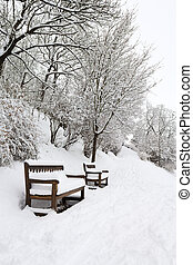 Forest park with benches covered in heavy snow