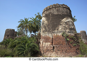 heritage of Punjab - ruined old fort with palm trees and...