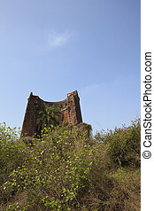 old fort in Punjab - part of an old crumbling fort with palm...