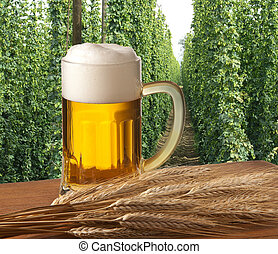 ber with hop field