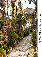 Spello (Umbria) - Spello (Perugia, Umbria, Italy) - Typical...