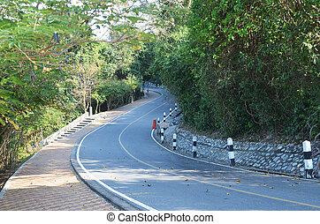 jungle, route