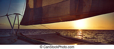 pôr do sol, catamaran, república, dominicano