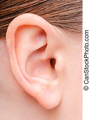 ear of a young woman - ear image of a young woman close-up