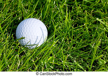 Golf Ball and Grass close up shot