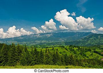 Piatra Craiului - Landscape in Transilvany