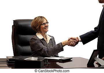 Woman Executive-Making the Deal - A business woman closing a...