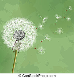 Vintage floral background with dandelion - Vintage floral...