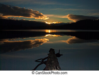 Log in Lake with Sunrise Reflection