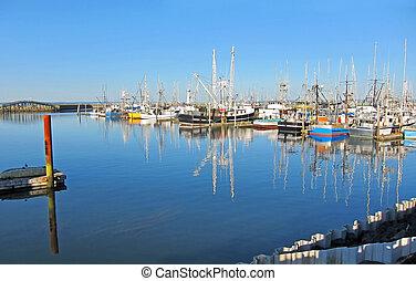 Fishing Boats Docked on Calm Seas
