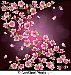 Japanese cherry tree, vector