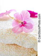 Gentle flower on luxury towel - Gentle fresh flower on...