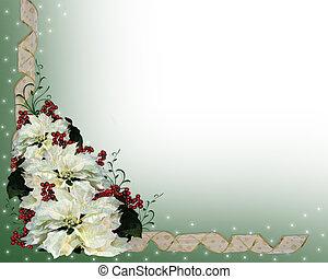 Christmas White Poinsettia Backgrou
