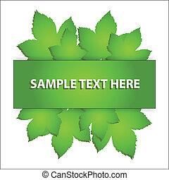 Vector leaf banner