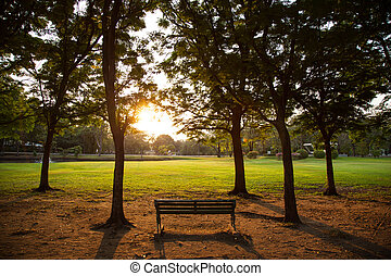 Bench in the park. - Bench in the park for people to relax...