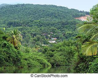 impression of Guadeloupe - idyllic jungle scenery with small...