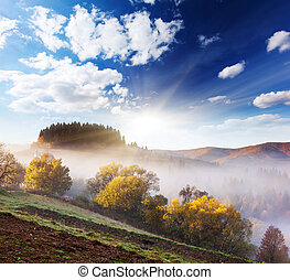 autumn - Majestic morning mountain landscape with colorful...