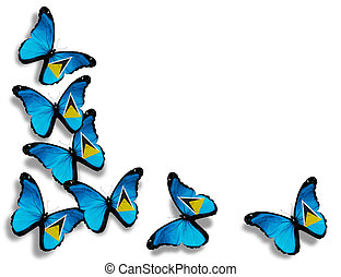 Saint Lucia flag butterflies, isolated on white background