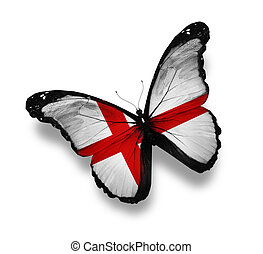 English flag butterfly, isolated on white