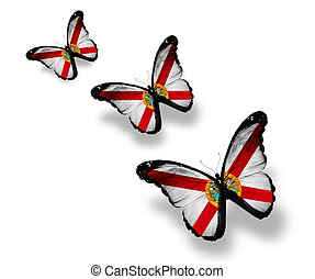 Three Florida flag butterflies, isolated on white
