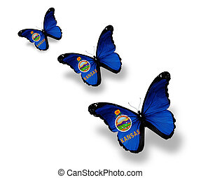 Three Kansas flag butterflies, isolated on white