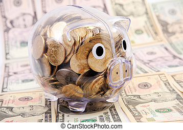 Savings in piggy bank isolated on dollars banknote...