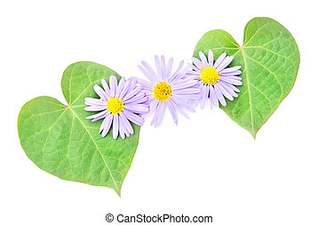 love concept: pair of hearts from leaves and flower for...