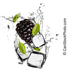 Blackberry with ice cubes, isolated on white background