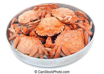 cinco, vermelho, fervido, caranguejos, panela, isolado,...