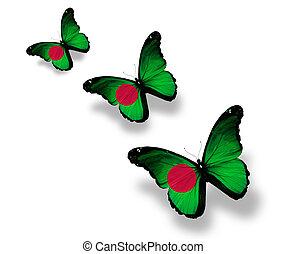 Bangladesz, motyle, trzy, odizolowany, Bandera, biały