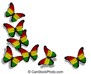 Bolivian flag butterflies, isolated on white background