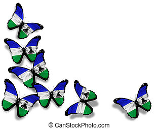 Kingdom of Lesotho flag butterflies, isolated on white...