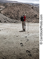Mountaineer trekker walking in Himalayas - Single...