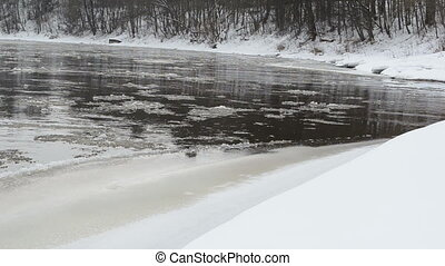 river bank snow floe - Forest river bay bank covered with...