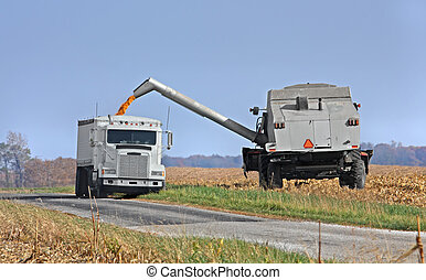 Corn Harvest - Transferring corn from a combine into a truck