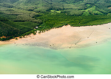Aerial view of the tropical shore