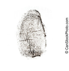 fingerprints on a white background