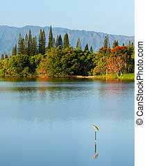 Bird perching on sign in calm lake by Na Pali - Bird perches...