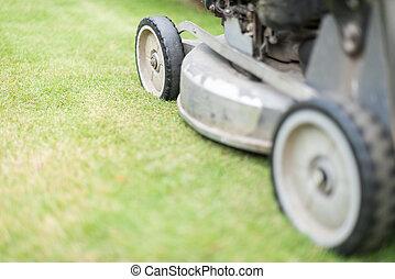 Cutting green grass in yard with lawnmower. - Close up view...