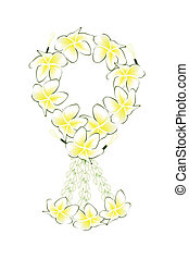 A Fresh White Colors of Plumeria Frangipanis Garland - A...