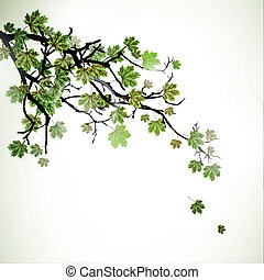 Vector Branch with Green Leafs