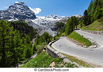Summer Stelvio Pass Italy - Summer Stelvio Pass with fir...